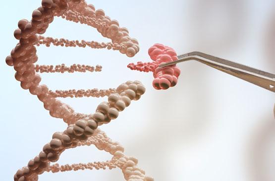 GATE 2022 Biotechnology Syllabus